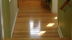 hardwood floors in upstairs hall