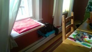 dining room cat platforms bonkers