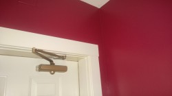 painting the laundry room benjamin moore night flower raspberry