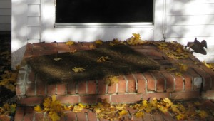 original old brick front stoop covered in fall leaves