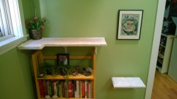 upstairs hall cat platform and bookcase