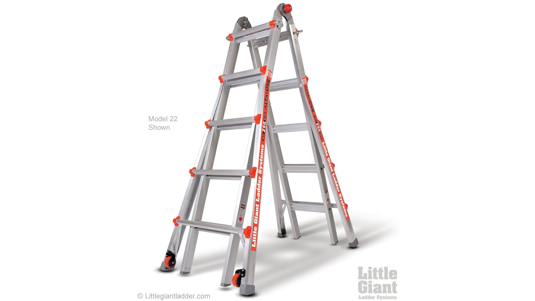 Little Giant Alta-One #22 Ladder