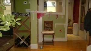downstairs hall cat platforms with red ikea brackets