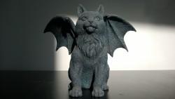 my kitty gargoyle kittygoyle cat
