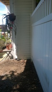 clearing the yard for the cat enclosure / catio