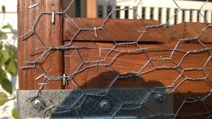 stapling chicken wire to the outdoor cat enclosure / catio