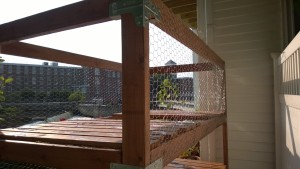 outdoor cat enclosure / catio chicken wire