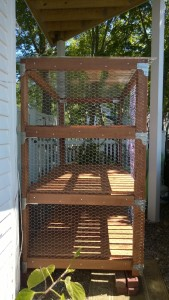 luan slats attached to outdoor cat enclosure / catio to cover the chicken wire staples