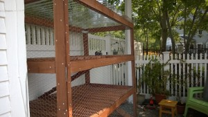 luan slats to cover staples completed for outdoor cat enclosure / catio