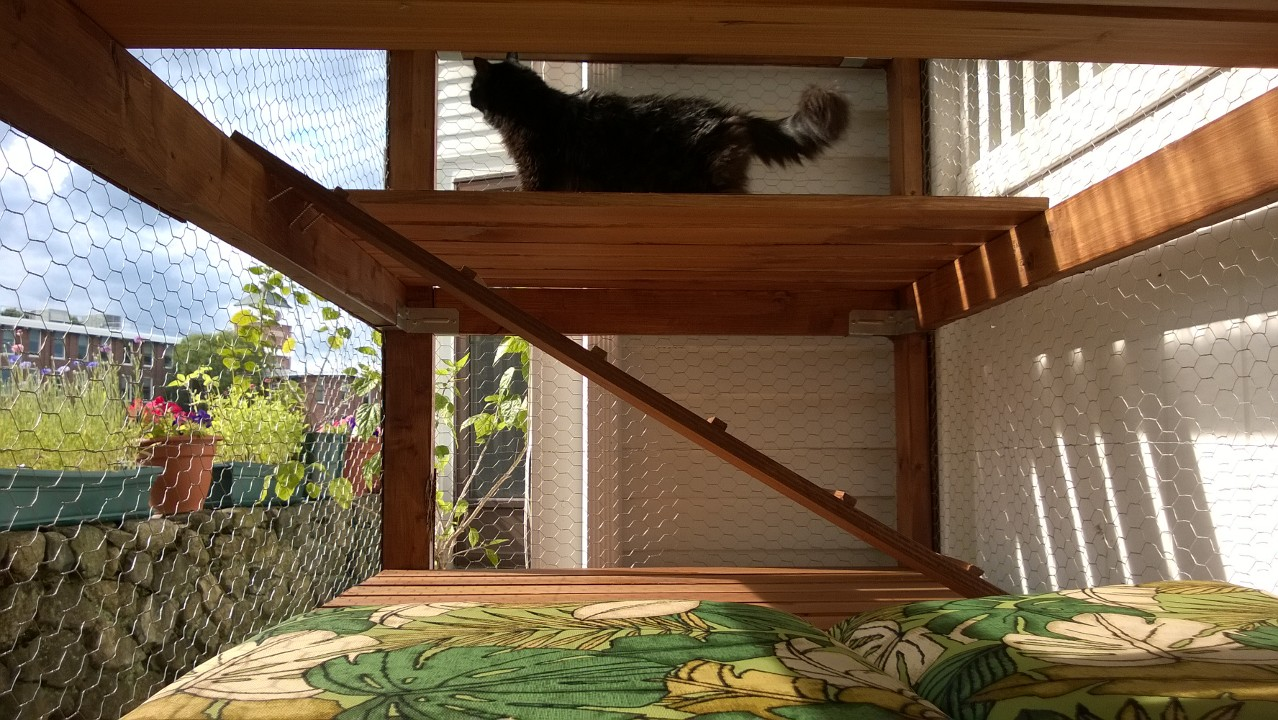 Backyard Catio – Part 19:  DONE!