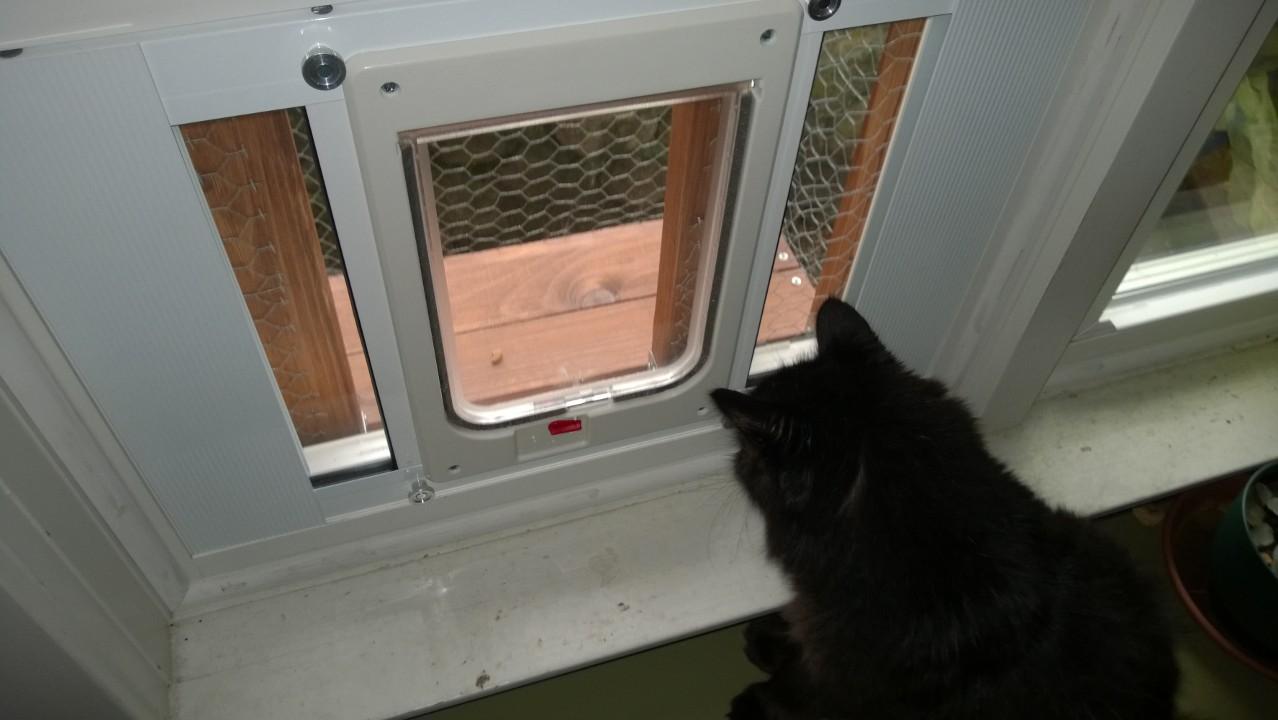 pin pet and doors litter box bed kitty hid door dog pass flaps cat window