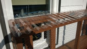 bolting the polycarbonate roof panels to the outdoor cat enclosure / catio