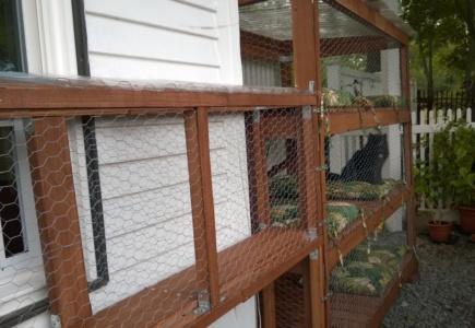 Backyard Catio – Part 18