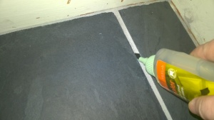 sealing the grout in the front entrance hall and closet