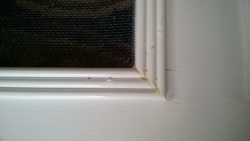 using wood filler to fill the gaps between the screen door molding