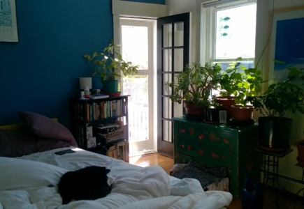 DIY Screen Door – Part 3