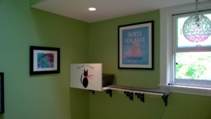 birdie's new litter box and privacy screen in the upstairs hallway