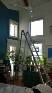 setting up the ladder in the bedroom to get rid of dust bunnies & cobwebs