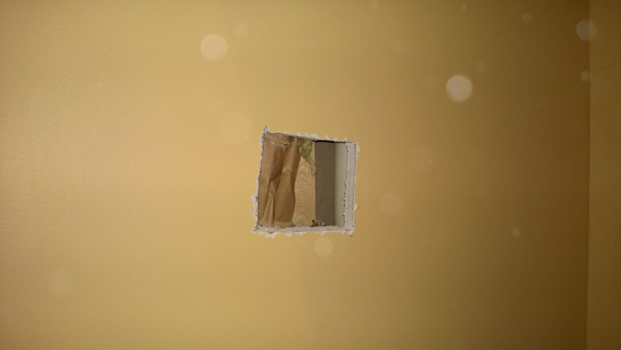 how to clean up black mold on drywall