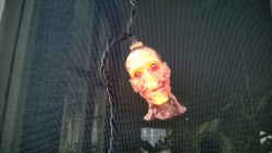 the zombie heads lit up when hubby flipped the living room mystery switch!