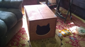 the catio sleeping box is completed!