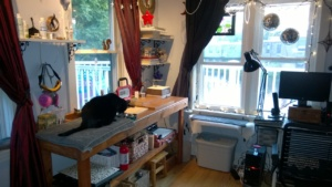 birdie having a snack in her new spot on the girl cave workbench