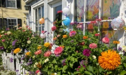 a beautiful garden in rockport, ma