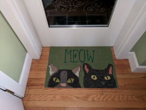 the awesome meow rug i bought in newburyport, ma