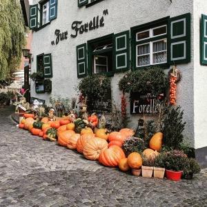 pumpkins outside a shop in ulm, germany